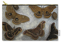 North American Large Moth Collection Carry-all Pouch