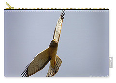 Northern Harrier Banking Carry-all Pouch by Mike  Dawson