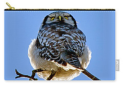 Northern Hawk Owl Looks Around Carry-all Pouch by Torbjorn Swenelius