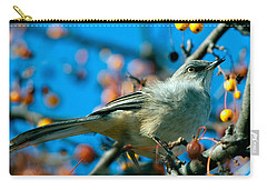 Northern Mockingbird Carry-all Pouch by Bob Orsillo