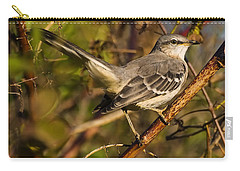 Northern Mockingbird Carry-all Pouch by Chris Flees