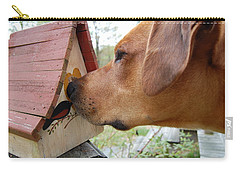 Carry-all Pouch featuring the photograph Nosey by Mim White