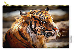 Not A Tigger Carry-all Pouch by Lynn Sprowl