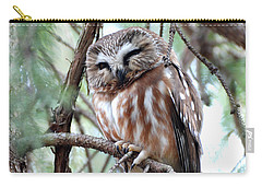 Northern Saw-whet Owl 2 Carry-all Pouch