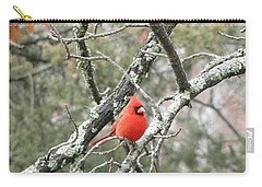 Observing Cardinal Carry-all Pouch