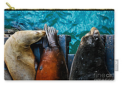 Odd Man Out California Sea Lions Carry-all Pouch by Terry Garvin