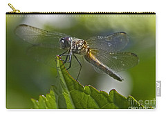 Odonata Carry-all Pouch