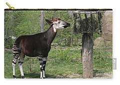 Okapi Carry-all Pouch