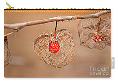 Old Chinese Lantern Pod Art Prints Carry-all Pouch