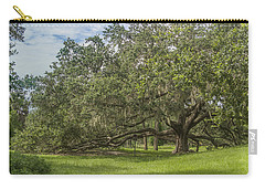 Carry-all Pouch featuring the photograph Old Oak Tree by Jane Luxton
