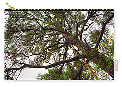 Carry-all Pouch featuring the photograph Old Pine by Mez