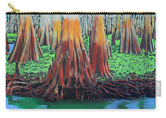 Carry-all Pouch featuring the painting Old Swampy by Deborah Boyd