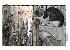 Old Town Alley Cat Carry-all Pouch by David Nicholls