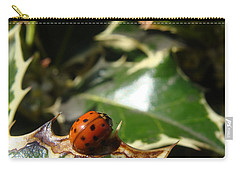 Carry-all Pouch featuring the photograph On The Edge by Cheryl Hoyle