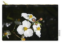 Carry-all Pouch featuring the photograph On The Shore Line by Denyse Duhaime