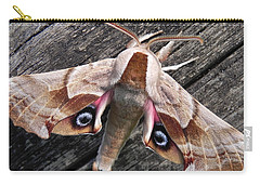 One-eyed Sphinx Carry-all Pouch by Cheryl Hoyle