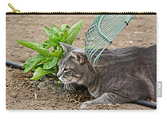 One Happy Cat Carry-all Pouch