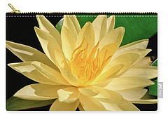 One Water Lily  Carry-all Pouch by Ed  Riche