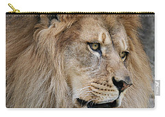 Carry-all Pouch featuring the photograph Onyo #4 by Judy Whitton