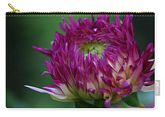 Carry-all Pouch featuring the photograph Opening Day by Denyse Duhaime