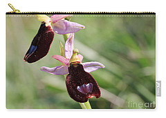 Ophrys Bertolonii Carry-all Pouch by Antonio Scarpi