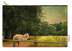 Orange Farm Cat Carry-all Pouch