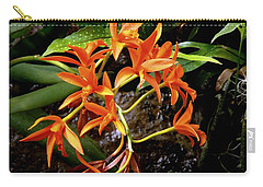 Orange Tendrils Carry-all Pouch by Rodney Lee Williams
