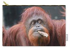 Orangutan Portrait Carry-all Pouch by Dan Sproul
