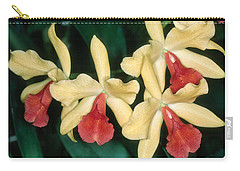 Orchid 11 Carry-all Pouch