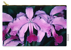 Orchid 6 Carry-all Pouch