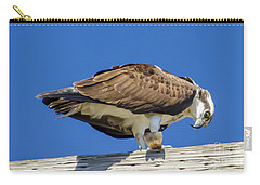 Carry-all Pouch featuring the photograph Osprey Eating Lunch by Dale Powell