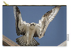 Carry-all Pouch featuring the photograph Osprey Landing by Dale Powell