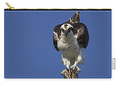 Osprey Photo Carry-all Pouch