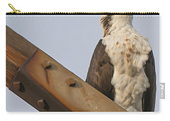Carry-all Pouch featuring the photograph Osprey -seahawk by Dale Powell