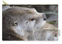 Otter And Family Carry-all Pouch