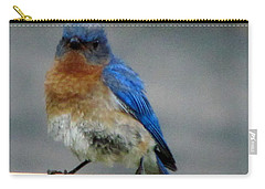 Our Own Mad Bluebird Carry-all Pouch