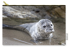 Out For A Swim Carry-all Pouch by David Millenheft