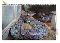 Out Of Africa  Black Snake Carry-all Pouch