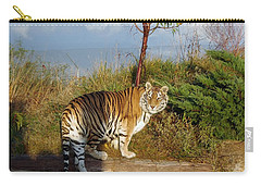 Out Of Africa  Tiger 1 Carry-all Pouch