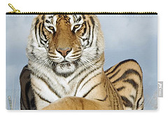 Out Of Africa Tiger 3 Carry-all Pouch