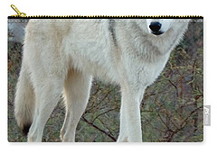 Out Of Africa Wolf  Carry-all Pouch