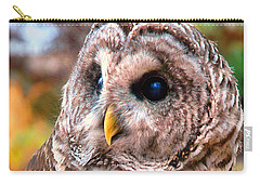 Carry-all Pouch featuring the photograph Owl Gaze by Adam Olsen