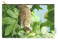 Carry-all Pouch featuring the photograph owl by Rod Wiens