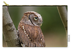 Pablo The Screech Owl Carry-all Pouch by Arthur Dodd