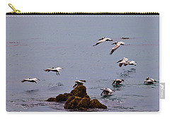 Pacific Landing Carry-all Pouch by Melinda Ledsome