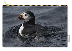 Carry-all Pouch featuring the photograph Paddling Puffin by Daniel Hebard