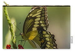 Carry-all Pouch featuring the photograph Palamedes Swallowtail by Jane Luxton