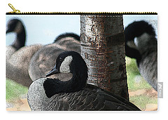 Carry-all Pouch featuring the photograph Pap Daddy Big Spring Park by Lesa Fine