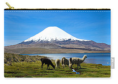 Parinacota Volcano Lake Chungara Chile Carry-all Pouch by Kurt Van Wagner
