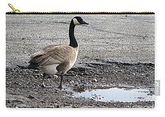 Carry-all Pouch featuring the photograph Parking Lot Attendant by Michael Krek